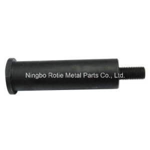 Chinese Manufacturer Good Quality Black Coating Threaded Fastening Bolt pictures & photos