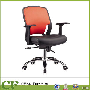 Adjustable Ergonomic Low Back Swivel Mesh Office Chair for Staff pictures & photos