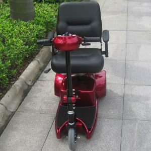 Electric Mobility Scooter 3 Wheel for Elderly (DL24250-1) pictures & photos