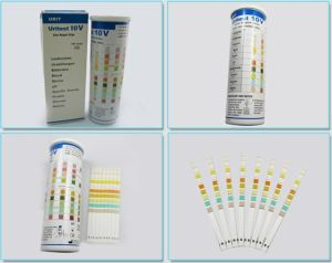 10 Parameters Urine Test Strip pictures & photos