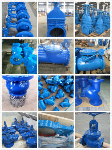 Pn10/Pn16 Globe Valves with Ce/Wars/ISO9001 (ANSI/JIS/BS/DIN)