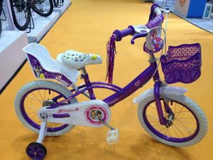 2016 New Fashion Factory Direct Export Children Bike pictures & photos