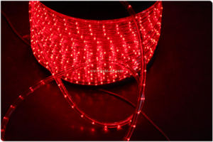 110V Steady 2 Wires LED Rope Light