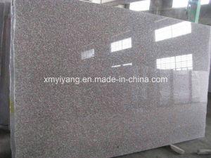 Bainbrook Brown G664 Granite Slab for Floor, Cuntertop, Tiles pictures & photos