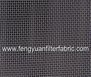 Stainless Steel Filter Wire Belt pictures & photos