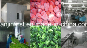 Fluidized Freezer for Fruit and Vegetable Strawberry IQF Freezer pictures & photos