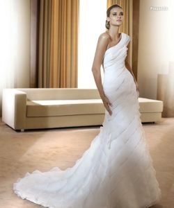 Popular Wedding Gown (Z-100)