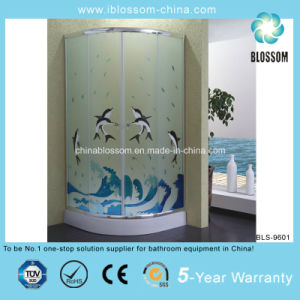2014 New Colorful Acid Glass Shower Room (BLS-9601) pictures & photos