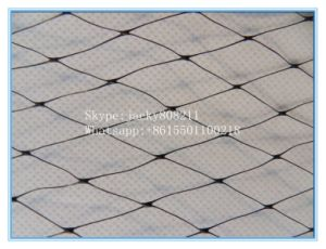High Strength Plastic Anti Bird Netting for Catching Bird pictures & photos
