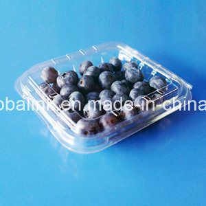 2016 Hot Sale Disposable Plastic Container for Blueberry 125 Gram pictures & photos
