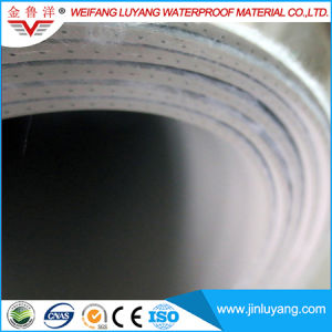 2mm PVC Waterproof Roofing Membrane with Fabric pictures & photos
