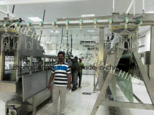 99.5% Plucking Rate- Produciton Line of Poultry Slaughter Equipment pictures & photos