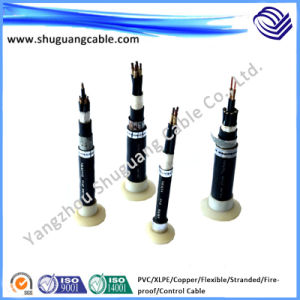 Fireproof/Flexible/XLPE Insulated/PVC Sheathed/Control Cable pictures & photos