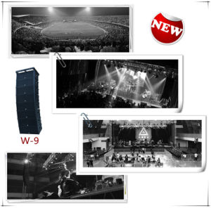 Dual 12 Inch Line Array for Big Outdoor Show (w-9) pictures & photos