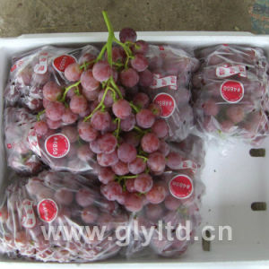 Chinese Good Quality Fresh Purple Global Grape pictures & photos