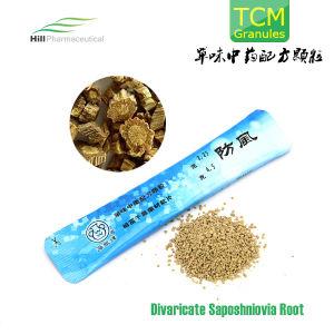 Traditional Chinese Medicine, Divaricate Saposhniovia Root Granules