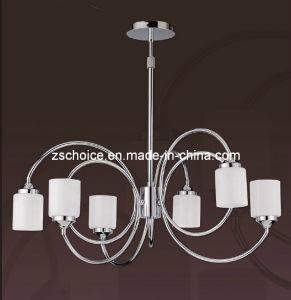 Unique Modern Pendant Lamp Chandelier (f64116)