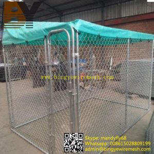 Welded Dog Cage Chain Link Dog Kennel pictures & photos