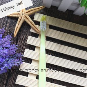 Adult Toothbrush/Disposable Tooth Brush/Hotel Toothbrush pictures & photos