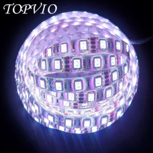 IP20/IP65/IP67/IP68 SMD5050 LED Flexible Strip/LED Strip Light Flexible/Flexible LED Strip pictures & photos