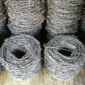 Electro Galvanized Barbed Obstacle Barbed Wire pictures & photos