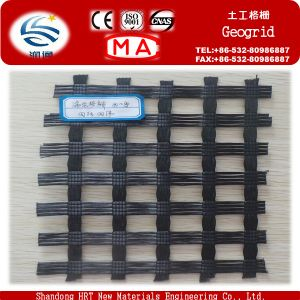 Low Price Polyester Pet Geogrid for Soil Protection pictures & photos