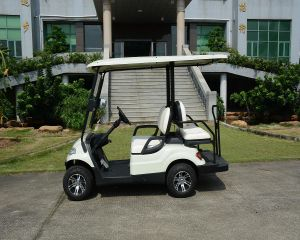 4 Wheels Chinese Manufacture Mini Utility Cart pictures & photos