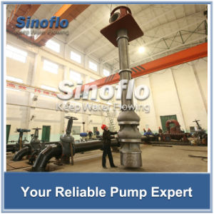 Long Axis Overhung Vertical Turbine Sump Dewatering/Drainage Pump pictures & photos