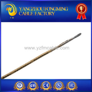 Mica Insulated High Temperature Electric Cable Wire with UL5107 pictures & photos