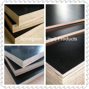 18mm Black and Brown Film Faced Plywood for Construciton pictures & photos
