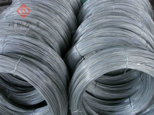 Hpb300 Wire Rod for Building