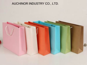 Carrier Paper Shopping Bags with Company Logo pictures & photos