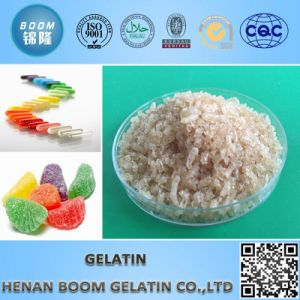 Gelatin pictures & photos