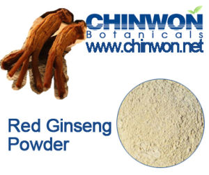 High Quality Red Ginseng Powder 4% Ginsenoside