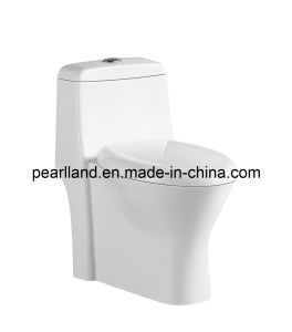 S-Trap Standing Floor Sanitary Ware Ceramic Toilet pictures & photos
