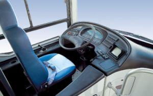 Large Size City Bus, Seats 37+1, 12m pictures & photos