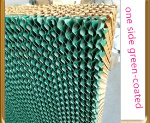Cooling Pad with Green and Yellow Color for Greenhouse pictures & photos