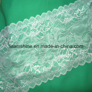 Wide Nylon Lace pictures & photos