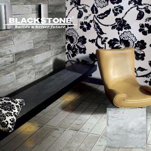 600X600 New Floor Tile Rusitic Tile Cement Series Matt (BGDMA66249) pictures & photos