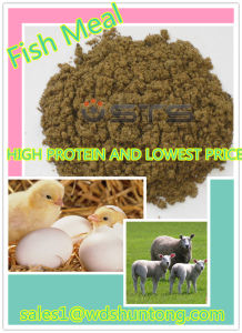 High Quality&Fish Meal with High Protein for Animal Feed pictures & photos