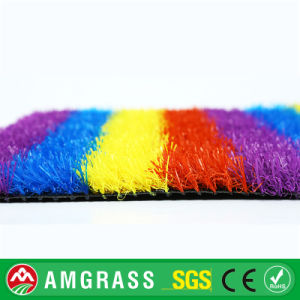 Colored Grass Products All Weather Floor Mat, Soccer Shoes Artificial Grass pictures & photos