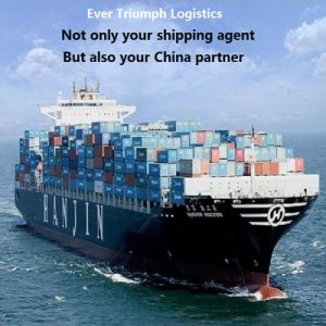 Cheap Ocean Shipping Freight From China to Indonesia