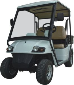 Simo2028kr 2 Seats High Quality Golf Cart with EU Certificate