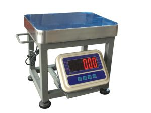 Digital Weighing Indicator with Big LED (AWR) pictures & photos