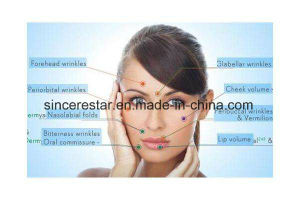 Food / Cosmetics / Injection Grade Hyaluronic Acid pictures & photos