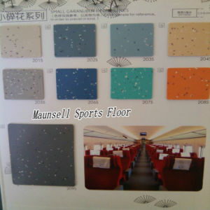 China Factory Top Quality PVC/Homogeneous Flooring for Transport Areas pictures & photos