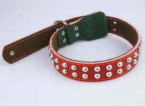 Pet Dog Cat Puppy Fashion Collar (cl3010)