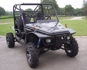 1100CC Go Kart 4X4 off Road Buggy pictures & photos