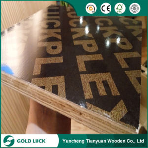 Cheap Price Finger Joint Film Faced Plywood pictures & photos