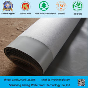 PVC Waterproofing Membrane Used for Artificial Stream Lining pictures & photos